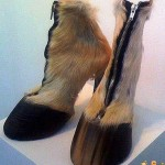 scarpe-per-donne-fashion[1]